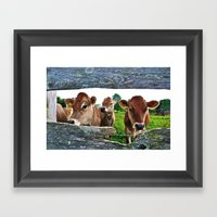 The Other Side Of The Fence Framed Art Print