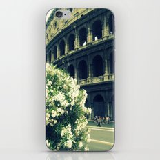 Summer in the Center iPhone & iPod Skin