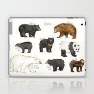 Bears Laptop & iPad Skin