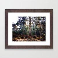 Presidio Of San Francisc… Framed Art Print
