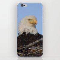 Eagle's Nest iPhone & iPod Skin