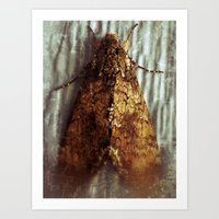 Well....it's a moth. Art Print