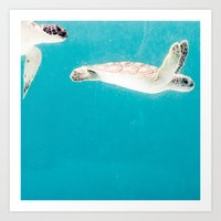 Turtles Art Print