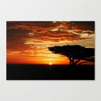 Firey Dragon  Canvas Print