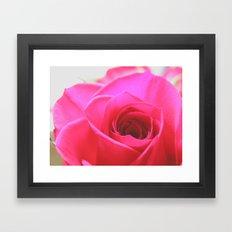 Pink Roses #2 Framed Art Print