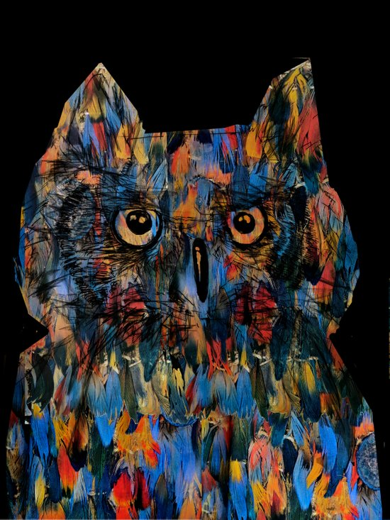 owlksi Canvas Print