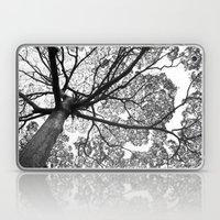 Jungletree Laptop & iPad Skin