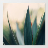 Canvas Print featuring Spine #9 by Alicia Bock