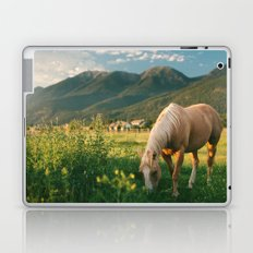 Pretty Horse Eating Grass in the Montana Sunset Laptop & iPad Skin