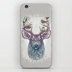 Magic Buck iPhone & iPod Skin