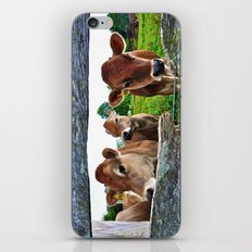 The Other Side Of The Fence iPhone & iPod Skin