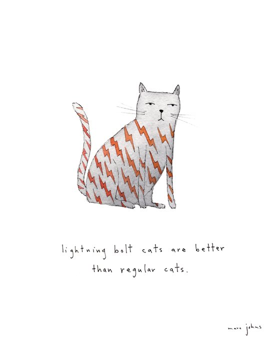 lightning bolt cats are better Canvas Print