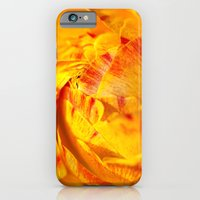 iPhone & iPod Case featuring ranunculus red/orange by mexi-photos