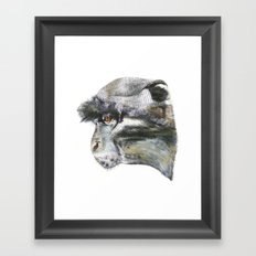 Sykes Monkey! Framed Art Print