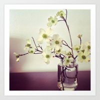 Dogwood Tree Branches Art Print