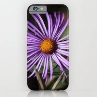 iPhone & iPod Case featuring Purple Flower by Ornithology