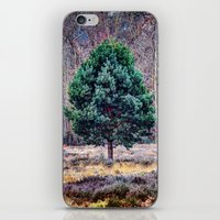 lone pine tree iPhone & iPod Skin