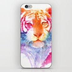 Rainbow stripes iPhone & iPod Skin