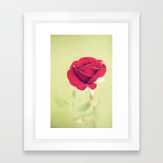Perfect Rose Framed Art Print