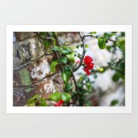 Wee Red Flowers Art Print