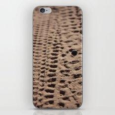 Pebble iPhone & iPod Skin