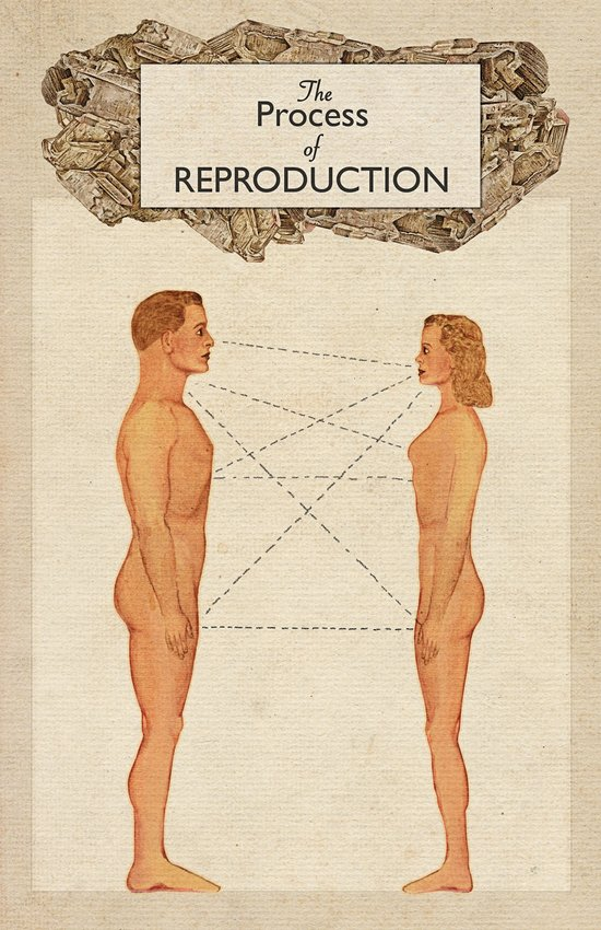 The Process of Reproduction I Art Print