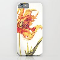 V. Vintage Flowers Botanical Print by Anna Maria Sibylla Merian - Parrot Tulip iPhone 6 Slim Case