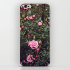 Sweet Summertime II iPhone & iPod Skin