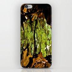 Mountain Moss iPhone & iPod Skin