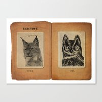 Cat vs. Owl Ear Tufts Canvas Print