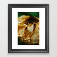 Whithering Beauty Framed Art Print
