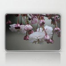Zierapfel Blüte   Laptop & iPad Skin