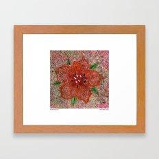 Scarlet Pimpernel Framed Art Print