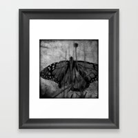 Wings in the Garden Framed Art Print