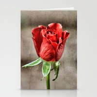 Red Rose Red Stationery Cards