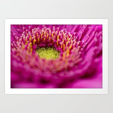 Flower 6620 Art Print