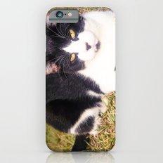 BatCat iPhone 6s Slim Case