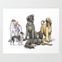 Graceful Sighthounds Art Print