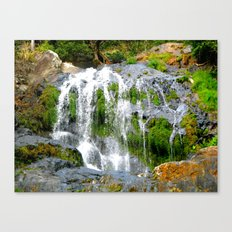 Waterfall over green rocks Canvas Print