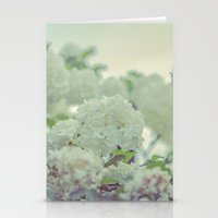 Spring White Flowers Stationery Cards