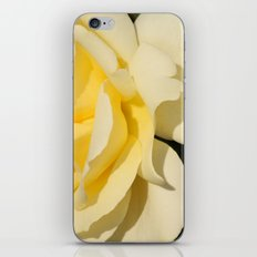 Good afternoon Rose  iPhone & iPod Skin
