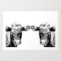 Black Cows Art Print