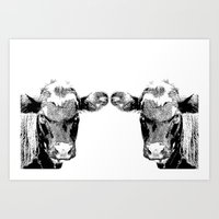 Black Cows Art Print