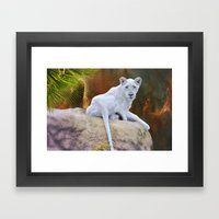 Rare White Lion  Framed Art Print