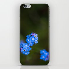 Forget Me Not iPhone & iPod Skin