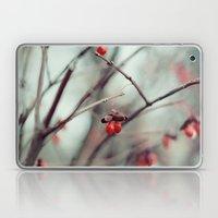 December Dream Laptop & iPad Skin