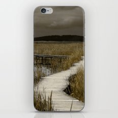 Storms of the Horizon iPhone & iPod Skin