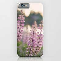 Summer eve by the lake iPhone 6 Slim Case