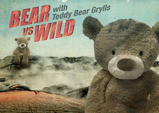 Teddy Bear Grylls Canvas Print