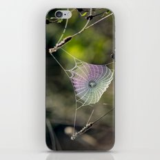 Spiderweb Colors iPhone & iPod Skin
